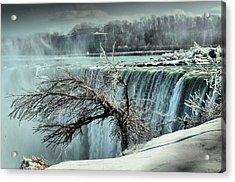Ice Covered Tree Acrylic Print by Douglas Pike