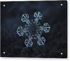 Snowflake Photo - Ice Crown Acrylic Print