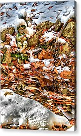 Ice Fishing Leprechaun Acrylic Print