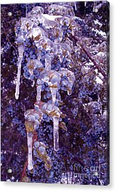 Ice In Purple Acrylic Print by R McLellan