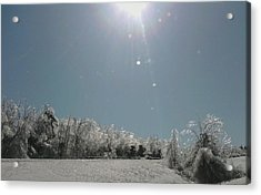 Acrylic Print featuring the photograph Ice Kissed by Ellen Levinson