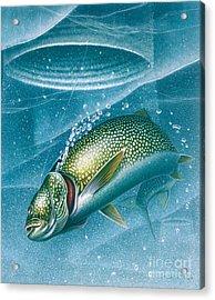 Ice Laker Acrylic Print by Jon Q Wright