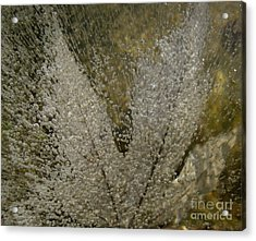 Ice Maple Acrylic Print