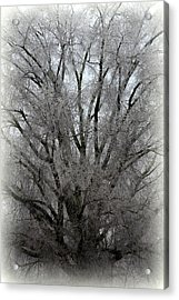 Ice Sculpture Acrylic Print