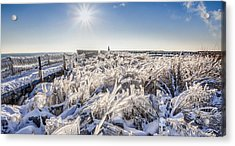 Ice Sculptures Acrylic Print by Anna-Lee Cappaert