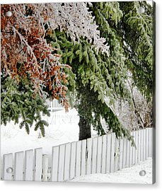 Ice Storm 3 Acrylic Print by Sophie Vigneault