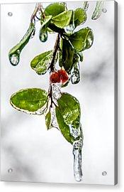 Ice Storm Acrylic Print