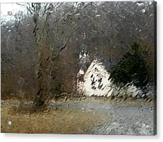 Acrylic Print featuring the photograph Ice Storm by Steven Huszar
