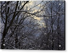 Winter's Embrace Acrylic Print