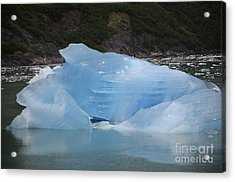Acrylic Print featuring the photograph Iceberg At Tracy Arm Fjord Juneau Alaska by JRP Photography