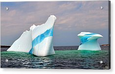 Iceberg Off The Coast Of Newfoundland Acrylic Print by Lisa Phillips