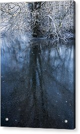 Iced Mirror Acrylic Print by Svetlana Sewell