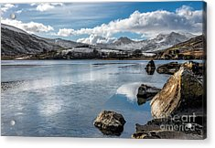 Iced Over Acrylic Print