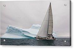 Iced Acrylic Print