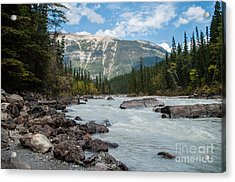 Icefields Parkway 2.0640 Acrylic Print by Stephen Parker