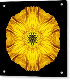 Acrylic Print featuring the photograph Iceland Poppy Flower Mandala by David J Bookbinder