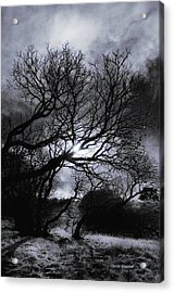 Ichabod's Pathway Acrylic Print by Donna Blackhall