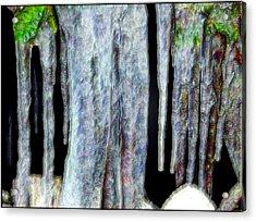 Icicles  Acrylic Print by Daniel Janda