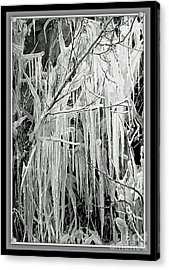 Icicles In Black And White Acrylic Print by Carol Groenen