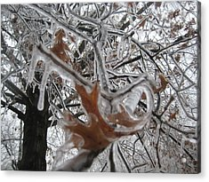 Icy Beckoning Acrylic Print