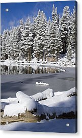 Icy Cold Acrylic Print by Chris Brannen