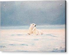 Icy Fields Acrylic Print