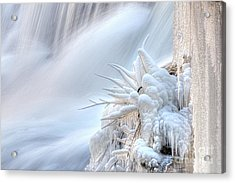 Acrylic Print featuring the photograph Icy Fingers by Wanda Krack
