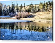 Icy Reflections Acrylic Print