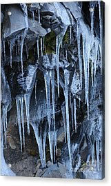 Icycles On Cliff Acrylic Print by Carol Groenen