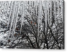 Icycles On The Eave Acrylic Print