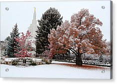 Idaho Falls Temple Winter Acrylic Print by David Andersen
