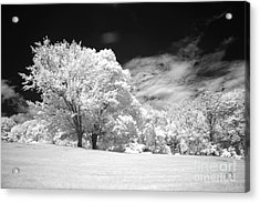 If 3 Acrylic Print by Alan Russo