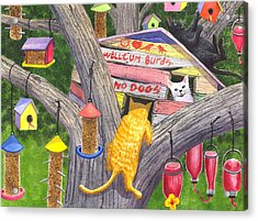 If Cats Could Pound Nails Acrylic Print by Catherine G McElroy