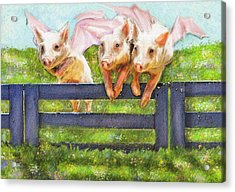 If Pigs Could Fly Acrylic Print