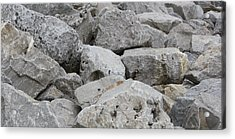 If Rocks Could Talk Acrylic Print by Terry Scrivner