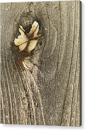 Acrylic Print featuring the photograph If Wooden Angels Could Fly by Marie Neder