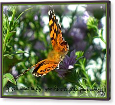Acrylic Print featuring the photograph If You Want To Fly by Heidi Manly