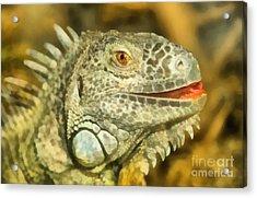 Iguana Acrylic Print by George Atsametakis