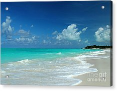 Iguana Island Caribbean Acrylic Print