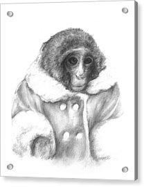 Ikea Monkey  Acrylic Print