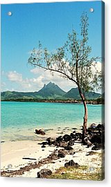 Ile Aux Cerfs Mauritius Acrylic Print by David Gardener