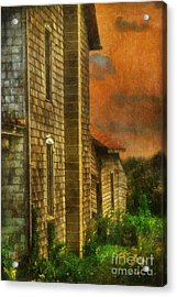 I'll Take Everything - Painterly Version Acrylic Print by Lois Bryan