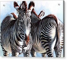 I'll Watch Your Back - Close Up Acrylic Print by Christine Karron