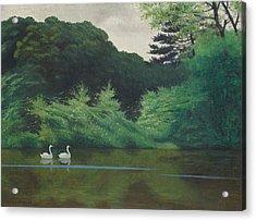 Ille Du Lac Saint James Acrylic Print by Felix Edouard Vallotton