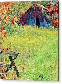 Illinois Backroads Acrylic Print by Virginia Folkman
