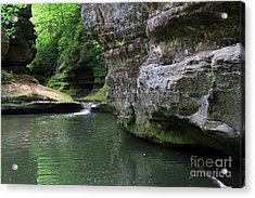 Illinois Canyon May 2014 Acrylic Print by Paula Guttilla
