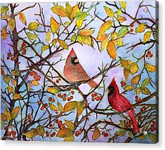 Illinois Cardinals  Acrylic Print