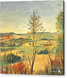 Illinois Country Acrylic Print