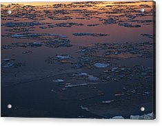 Illinois Floe Acrylic Print by Joe Bledsoe