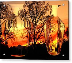 Acrylic Print featuring the photograph Illusion by Joyce Dickens